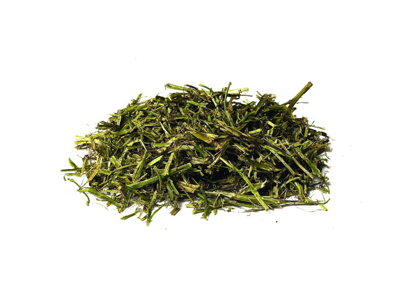 Feeding Glossary Alfalfa